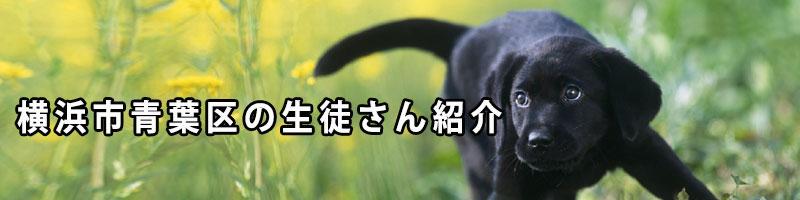 横浜市青葉区の生徒さん紹介